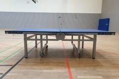 Verkaufen Donic Delhi 25 Tischtennistische