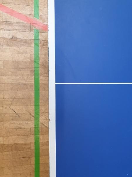 donic-delhi-25-tischtennistisch-tischtennisplatte-013