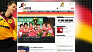 Screenshot Website Team-WM 2012